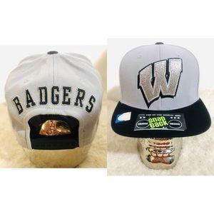 Wisconsin Badgers SnapBack Hat- Metallic/ Platinum